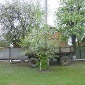 P1060659