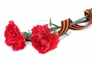 St. George's Ribbon & Red Carnations
